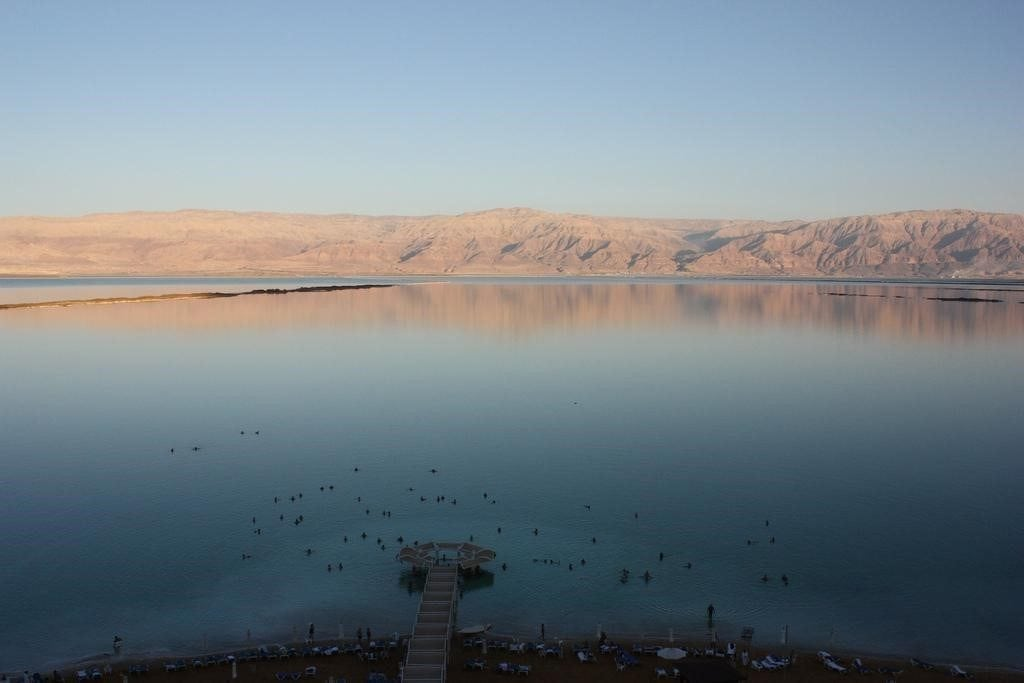 Is the dead sea dead?