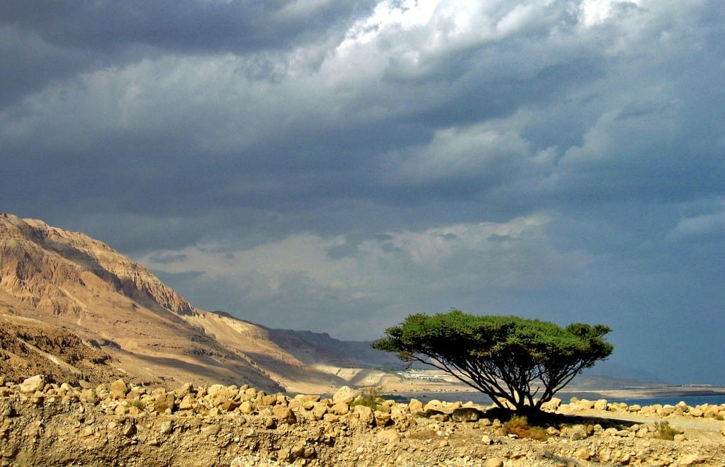 Dead Sea Weather Guide: When Is The Best Time To Visit The