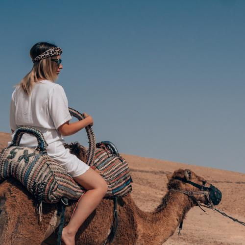 camel riding in Judean deser