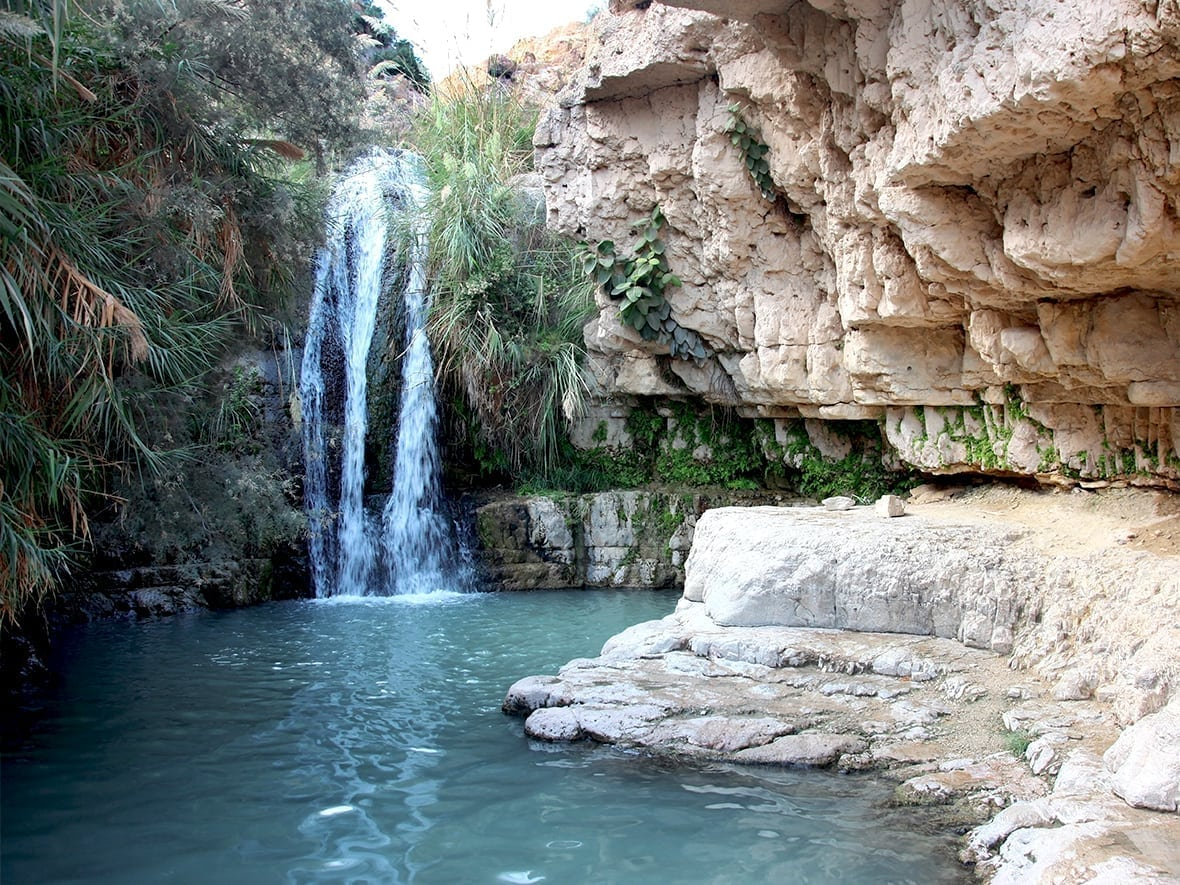 ein gedi waterfall dead sea